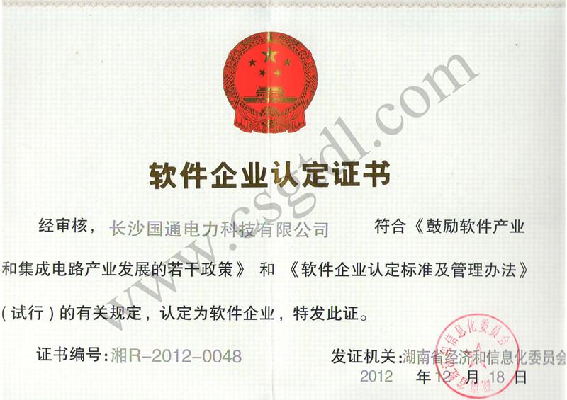 国通电力企业软件证书